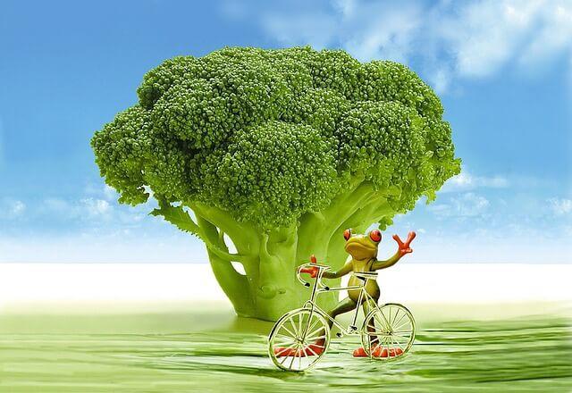 broccoli fiber to improve diet